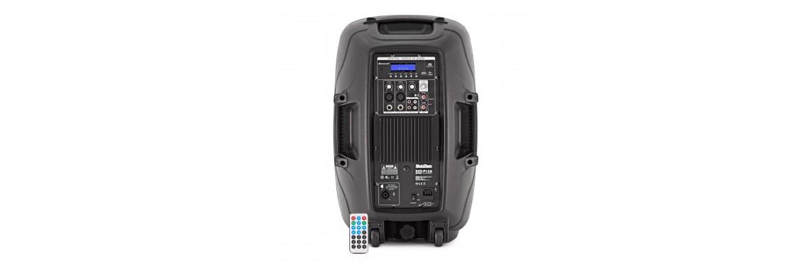 Stage Speaker 250W